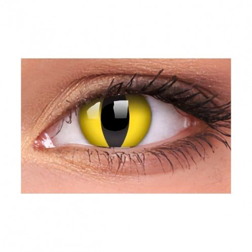Cat Eye Yellow 1-Day